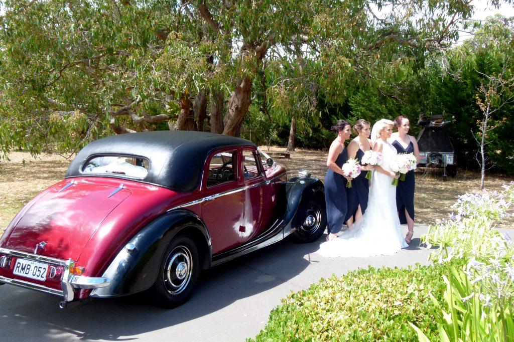 Riley at a Wedding